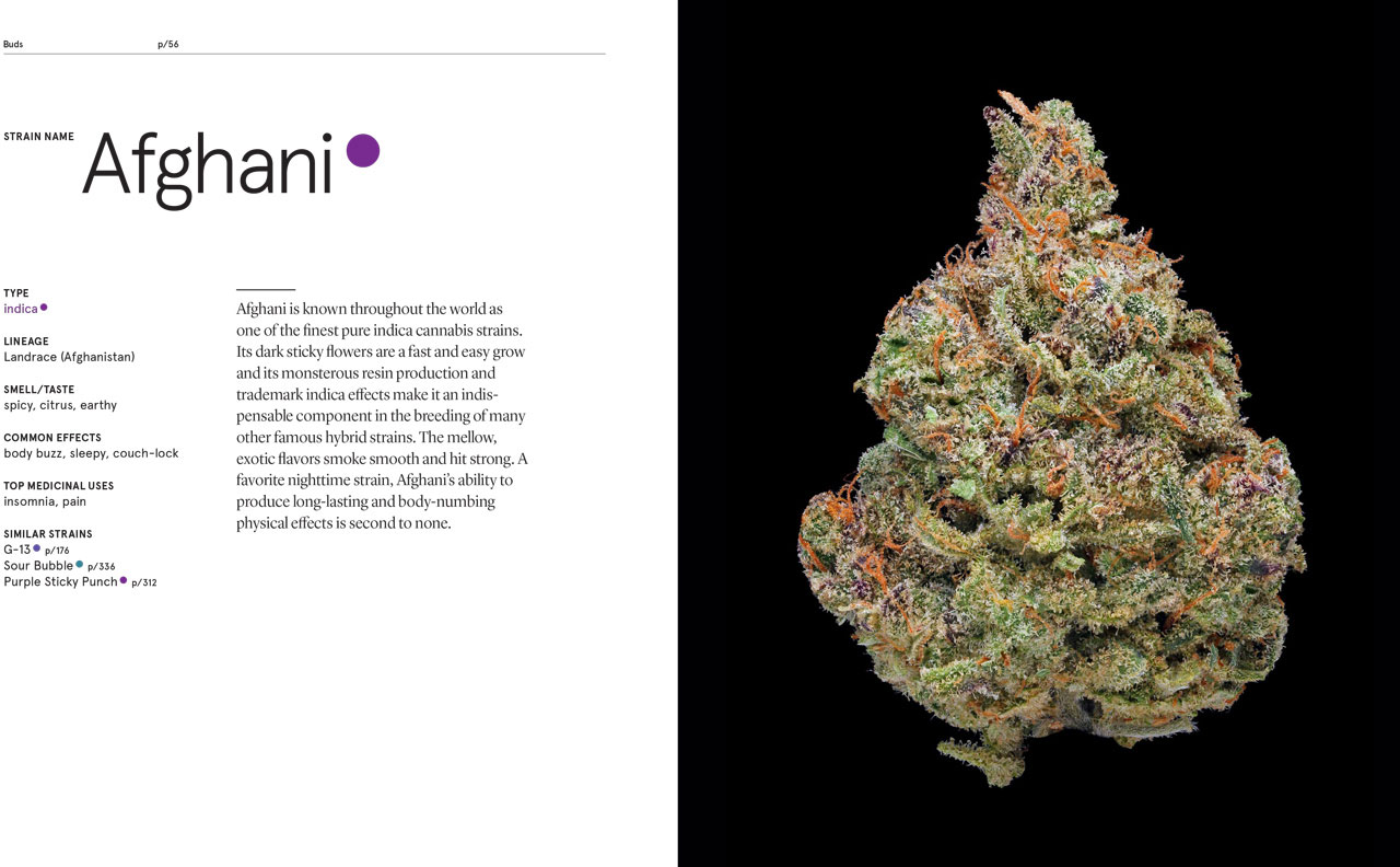 Green--A-Field-Guide-To-Marijuana-07