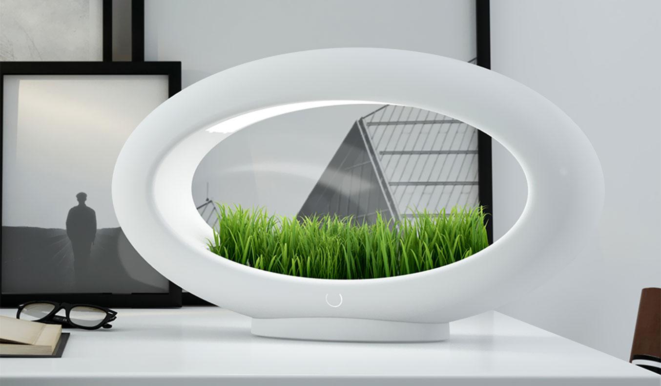 The Grass Lamp