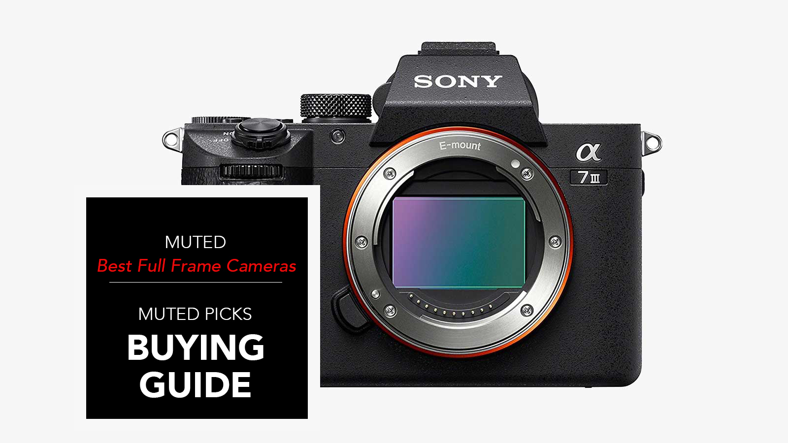 Best Full Frame Cameras for Any Budget | | Muted